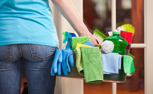 Domestic cleaning lady